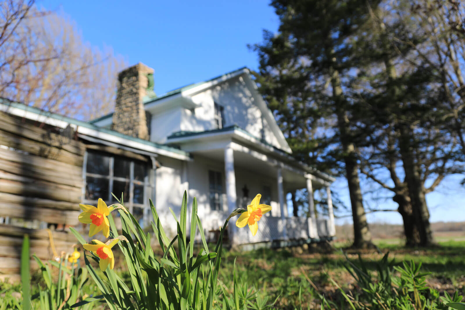 Glen Elbe Evergreen Lodge 2020