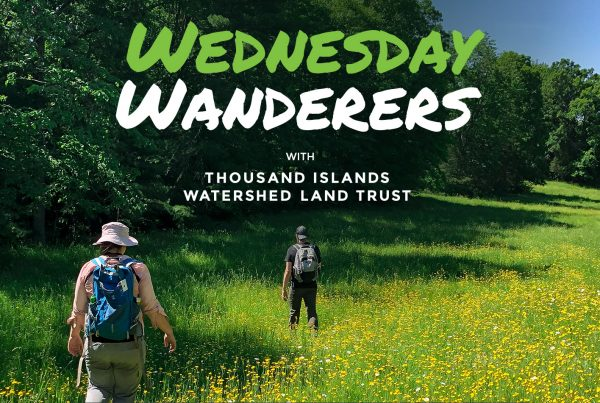 Wednesday Wanderers